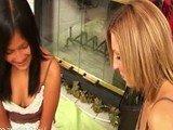 Три молоденькие девчонки пробуют в деле новую секс игрушку