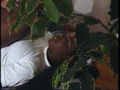 Молодая негритянка уступила белокожему мужику и ебется с ним