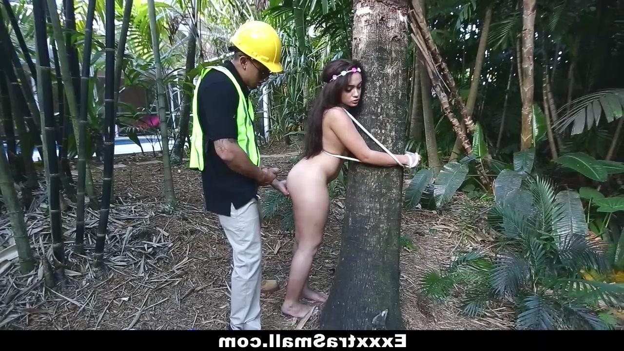 Дивный лес порно видео